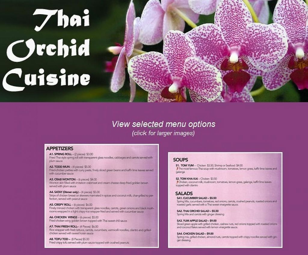 """Photo of Thai Orchid Cusine  by <a href=""""/members/profile/community"""">community</a> <br/>Thai Orchid Cusine <br/> March 12, 2015  - <a href='/contact/abuse/image/56436/204804'>Report</a>"""