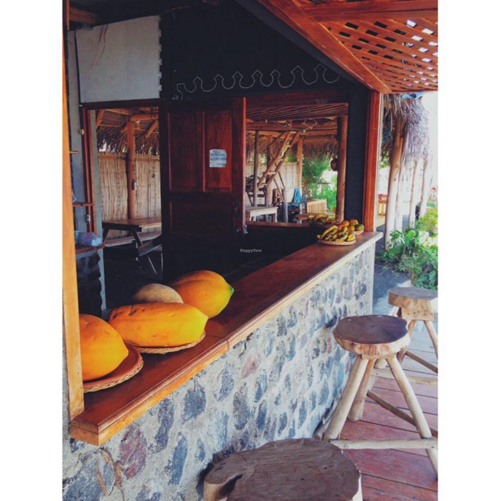 """Photo of Rancho Morgan  by <a href=""""/members/profile/MO.MARIEL"""">MO.MARIEL</a> <br/>the bar <br/> March 12, 2015  - <a href='/contact/abuse/image/56443/95552'>Report</a>"""