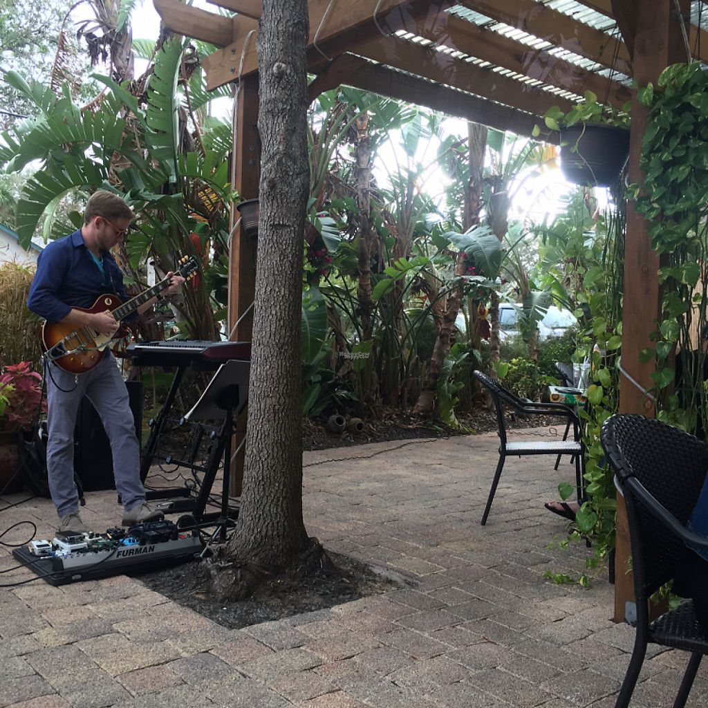 "Photo of Cafe Verde  by <a href=""/members/profile/NathanOriol"">NathanOriol</a> <br/>live music and outdoor seating <br/> December 11, 2016  - <a href='/contact/abuse/image/56565/199909'>Report</a>"