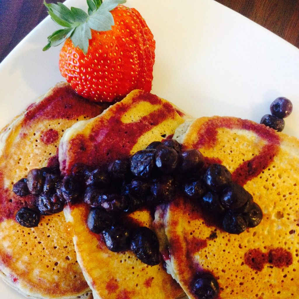 "Photo of NewLife Natural Vegetation Cell Food  by <a href=""/members/profile/LaurelHandfield"">LaurelHandfield</a> <br/>Our moist, delicious spelt pancakes topped off with a colorful tangy fruit garnish <br/> March 16, 2015  - <a href='/contact/abuse/image/56585/95890'>Report</a>"