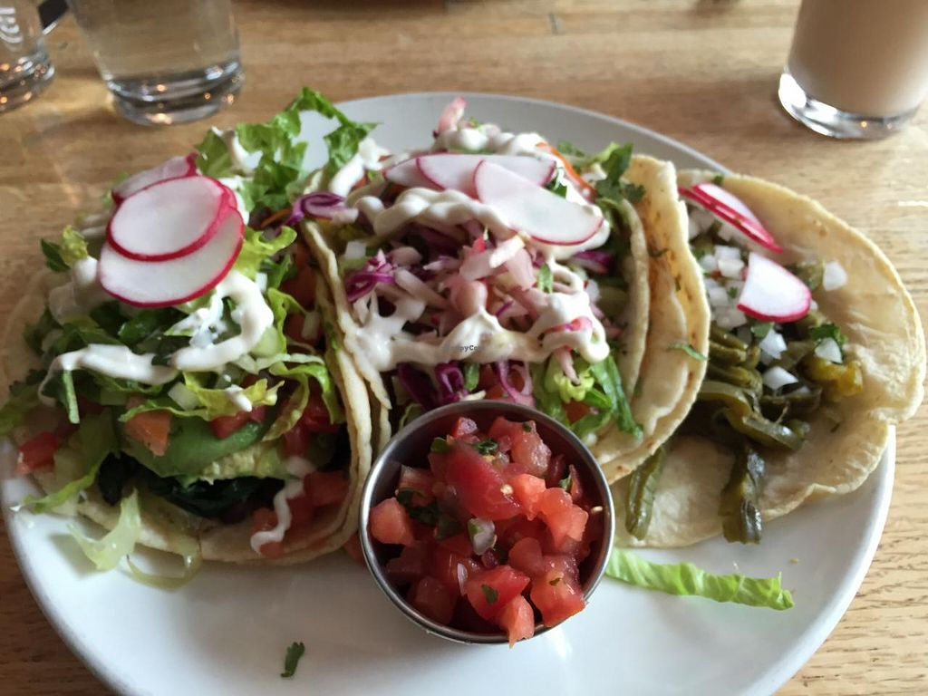 """Photo of Taco Chulo  by <a href=""""/members/profile/Ethan"""">Ethan</a> <br/>Left to Right: The Santa Cruz, Conejos and Nopalitos tacos <br/> March 19, 2015  - <a href='/contact/abuse/image/56655/96150'>Report</a>"""