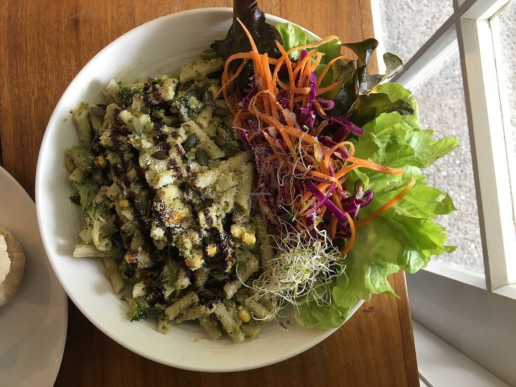 """Photo of Food Forest Organics  by <a href=""""/members/profile/Yolanda"""">Yolanda</a> <br/>Walnut and basil pesto pasta with salad <br/> March 18, 2018  - <a href='/contact/abuse/image/56720/372326'>Report</a>"""