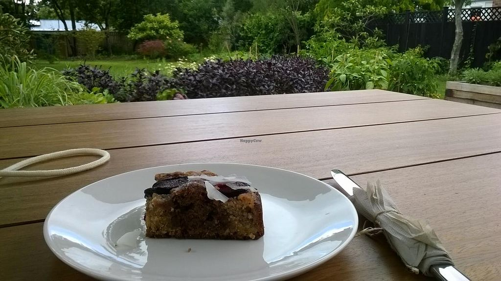 """Photo of Food Forest Organics  by <a href=""""/members/profile/Yolanda"""">Yolanda</a> <br/>plum cake <br/> March 20, 2015  - <a href='/contact/abuse/image/56720/96324'>Report</a>"""