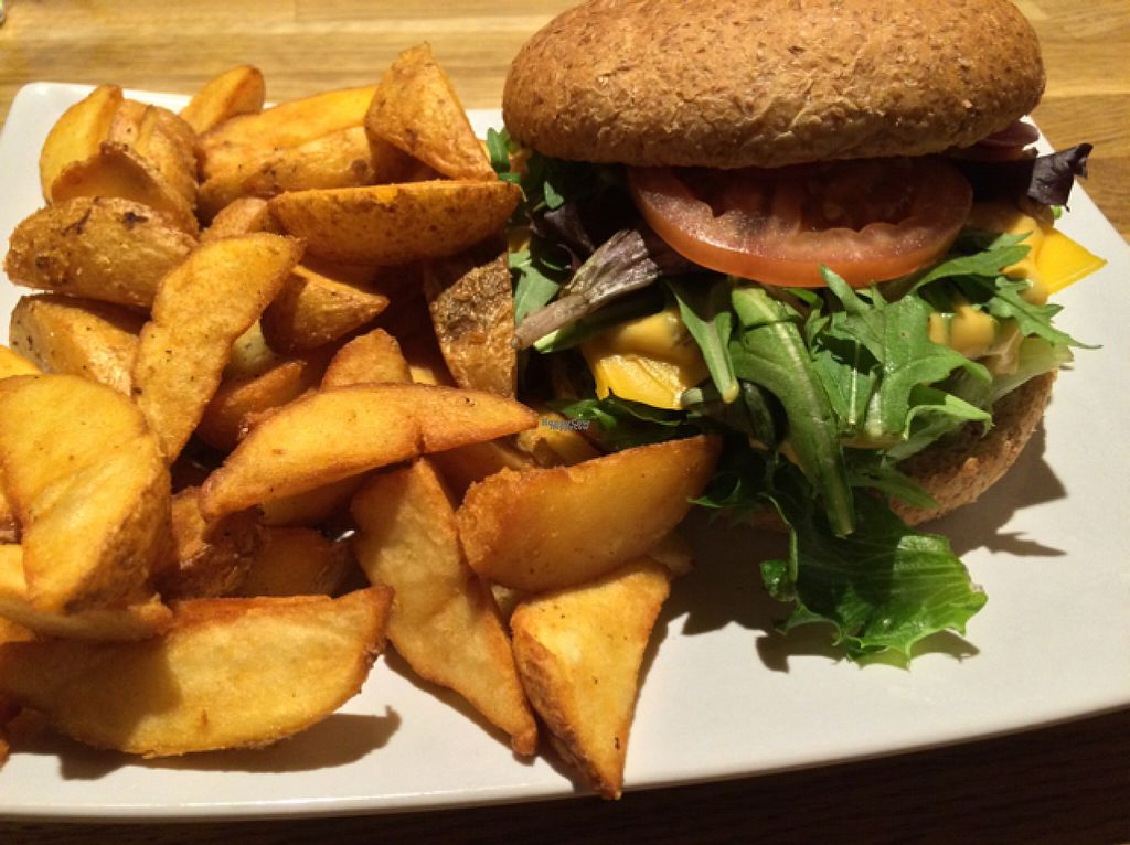 """Photo of The Vegan Bar  by <a href=""""/members/profile/VeganBoulder"""">VeganBoulder</a> <br/>The Aburger <br/> August 5, 2016  - <a href='/contact/abuse/image/56739/165944'>Report</a>"""