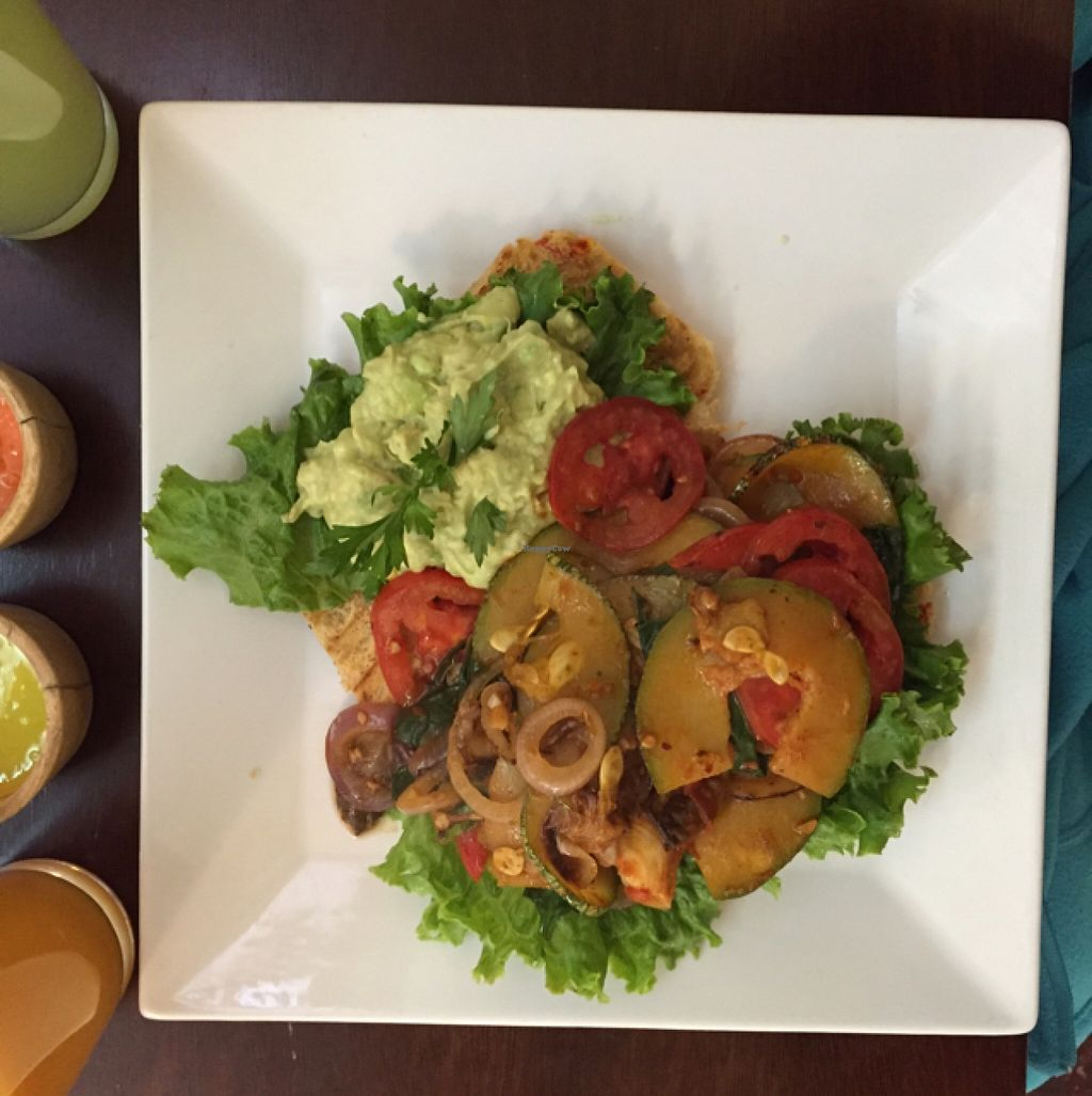 """Photo of CLOSED: The Green Patio  by <a href=""""/members/profile/lovekaletravel"""">lovekaletravel</a> <br/>Toast with avacado pate  <br/> October 3, 2015  - <a href='/contact/abuse/image/56856/119987'>Report</a>"""