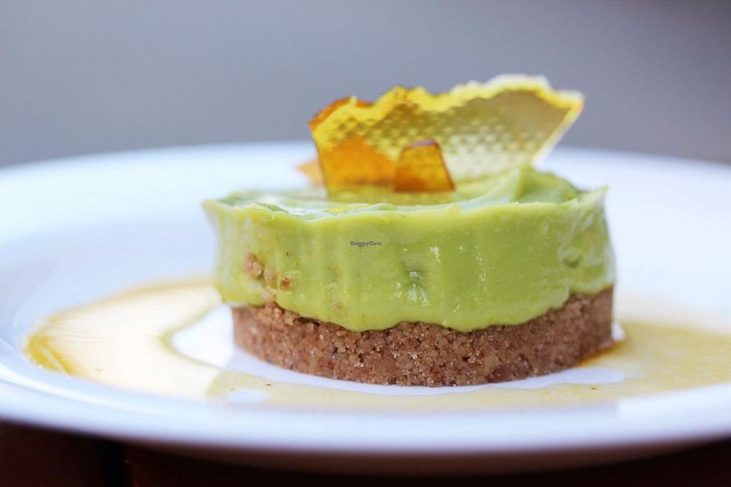 """Photo of The Thirsty Koala  by <a href=""""/members/profile/dba"""">dba</a> <br/>Vegan key lime mousse <br/> March 27, 2015  - <a href='/contact/abuse/image/56940/97147'>Report</a>"""