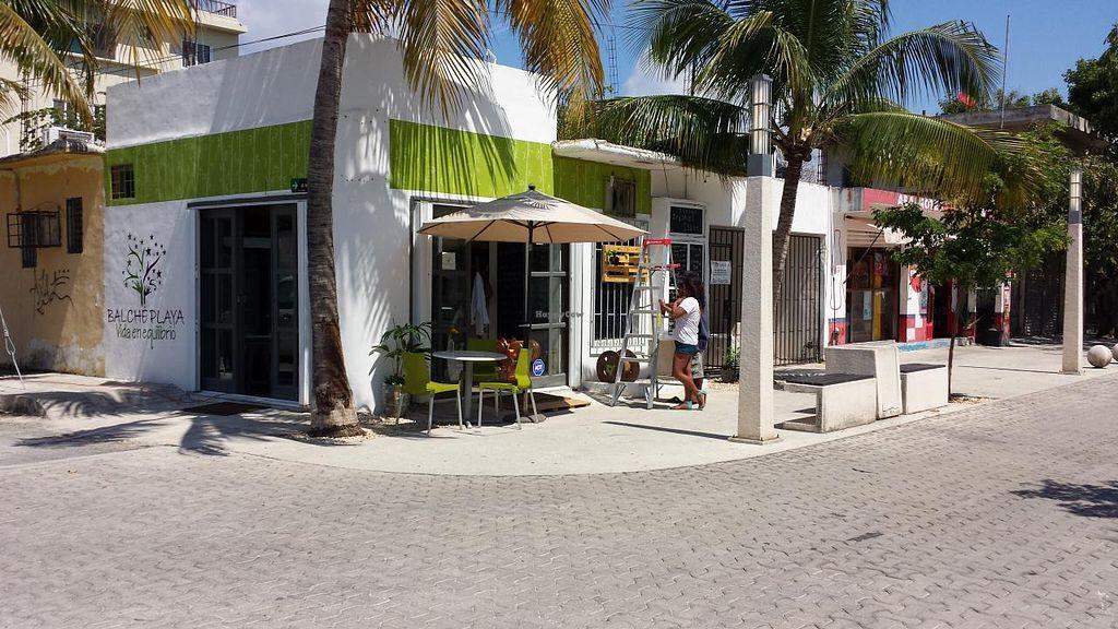 "Photo of CLOSED: Balche Playa  by <a href=""/members/profile/balcheplaya"">balcheplaya</a> <br/>Beautiful corner 5a. Av & 48 Norte <br/> March 29, 2015  - <a href='/contact/abuse/image/56941/97283'>Report</a>"