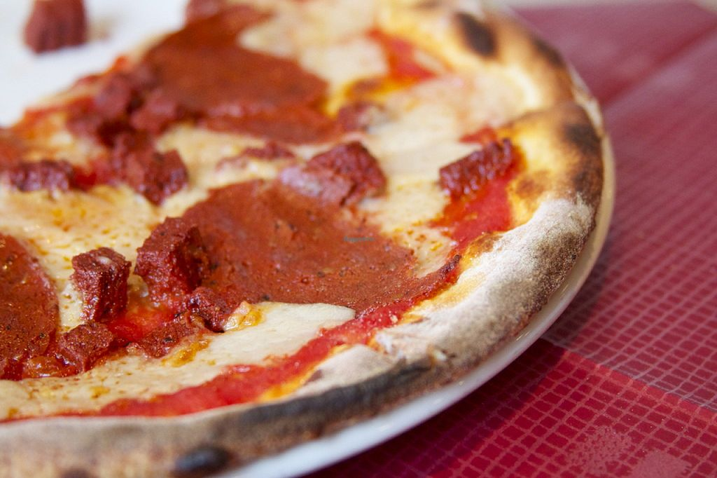"""Photo of Morelli Zorelli  by <a href=""""/members/profile/fatbobcat"""">fatbobcat</a> <br/>Vegan pepperoni pizza <br/> August 4, 2015  - <a href='/contact/abuse/image/56987/112177'>Report</a>"""