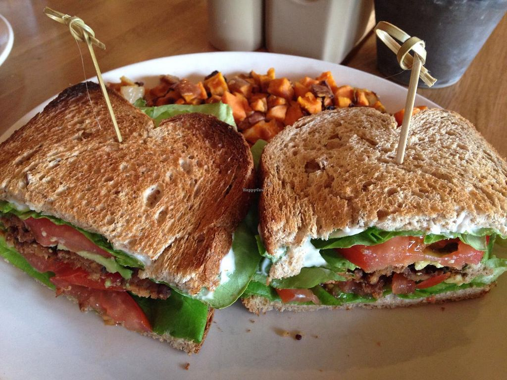 "Photo of True Food Kitchen  by <a href=""/members/profile/calamaestra"">calamaestra</a> <br/>Tempeh sandwich  <br/> April 12, 2015  - <a href='/contact/abuse/image/56993/98747'>Report</a>"