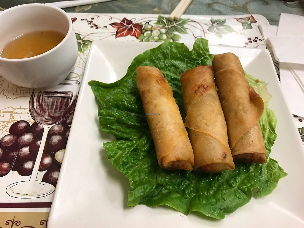 """Photo of CLOSED: Green Lotus Vegan  by <a href=""""/members/profile/Tigra220"""">Tigra220</a> <br/>Egg Rolls and the weird sauce that didn't taste like sweet & sour sauce <br/> May 29, 2017  - <a href='/contact/abuse/image/57012/263997'>Report</a>"""