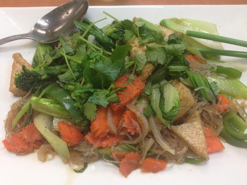 """Photo of CLOSED: Green Lotus Vegan  by <a href=""""/members/profile/veggiesince1977"""">veggiesince1977</a> <br/>One of many items offered on the menu <br/> March 31, 2015  - <a href='/contact/abuse/image/57012/97449'>Report</a>"""