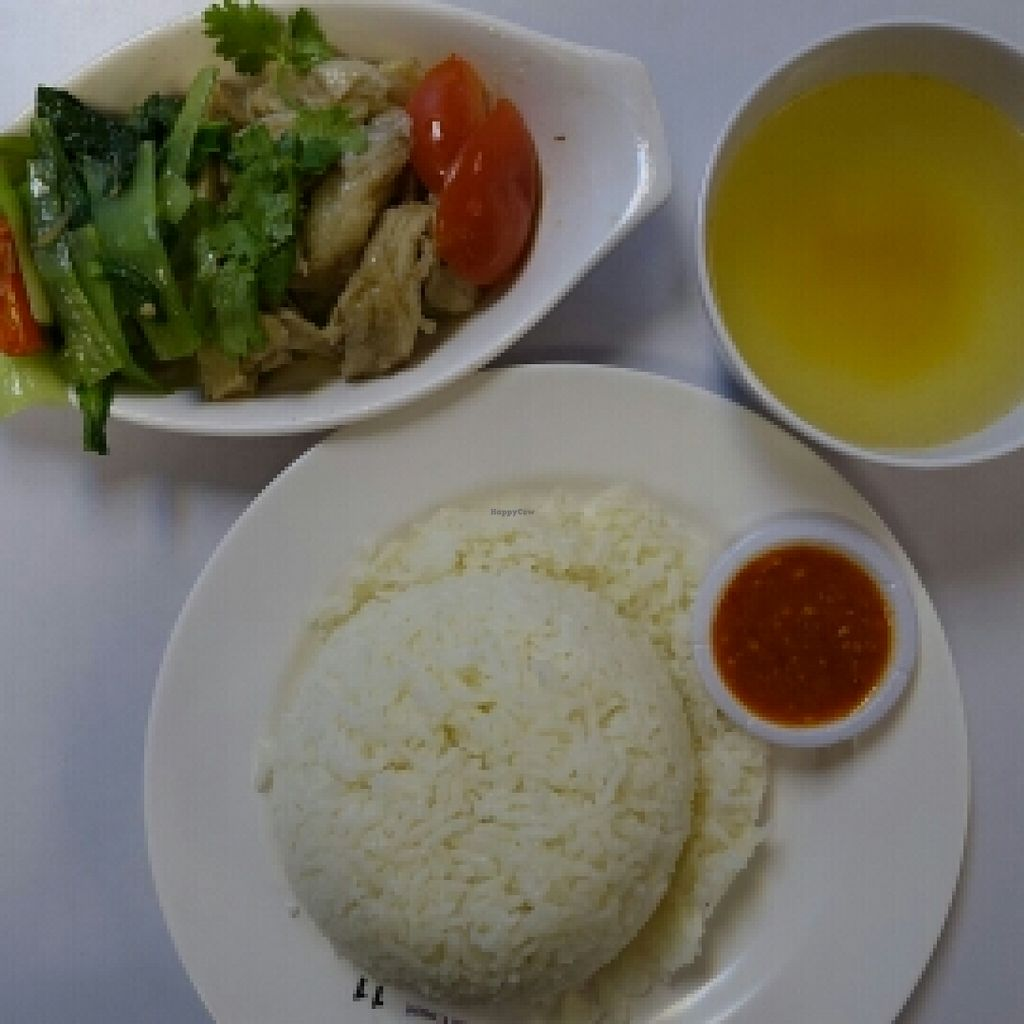 """Photo of CLOSED: Just Green  by <a href=""""/members/profile/JimmySeah"""">JimmySeah</a> <br/>Vegetarian chicken rice set <br/> September 27, 2015  - <a href='/contact/abuse/image/57018/119310'>Report</a>"""