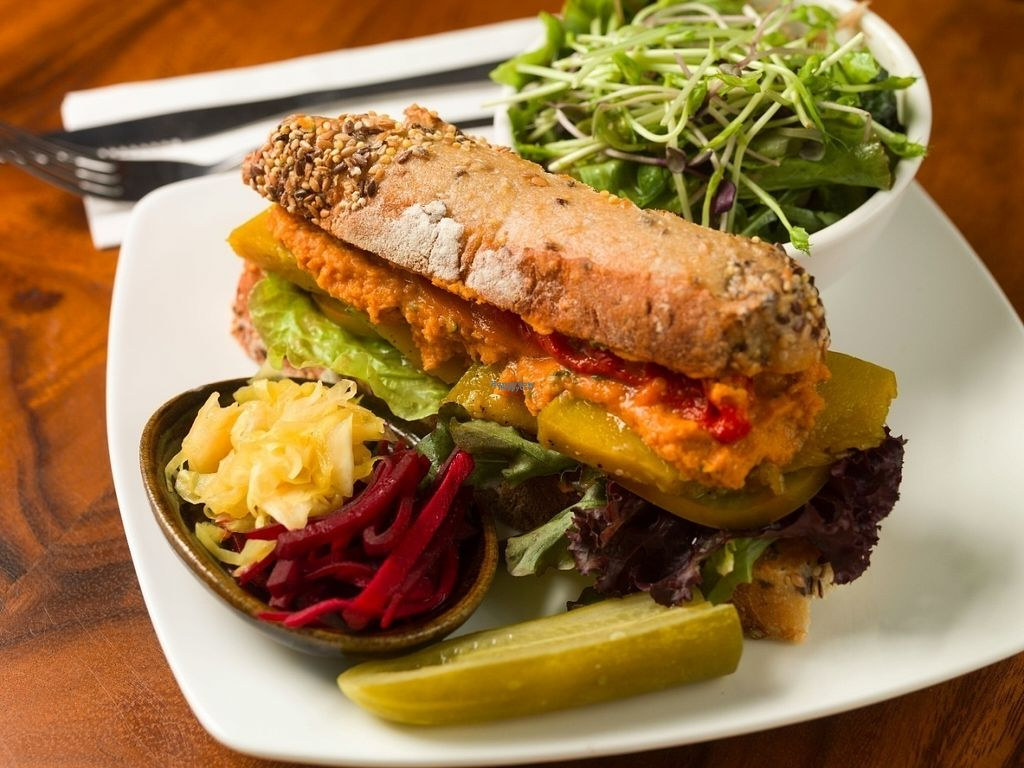 "Photo of Backyard Cafe  by <a href=""/members/profile/EmmaFountain"">EmmaFountain</a> <br/>Vegan Sandwich <br/> October 10, 2016  - <a href='/contact/abuse/image/57031/180921'>Report</a>"