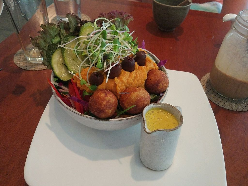 "Photo of Backyard Cafe  by <a href=""/members/profile/LennyKalt"">LennyKalt</a> <br/>falaffel bowl <br/> December 6, 2017  - <a href='/contact/abuse/image/57031/332831'>Report</a>"