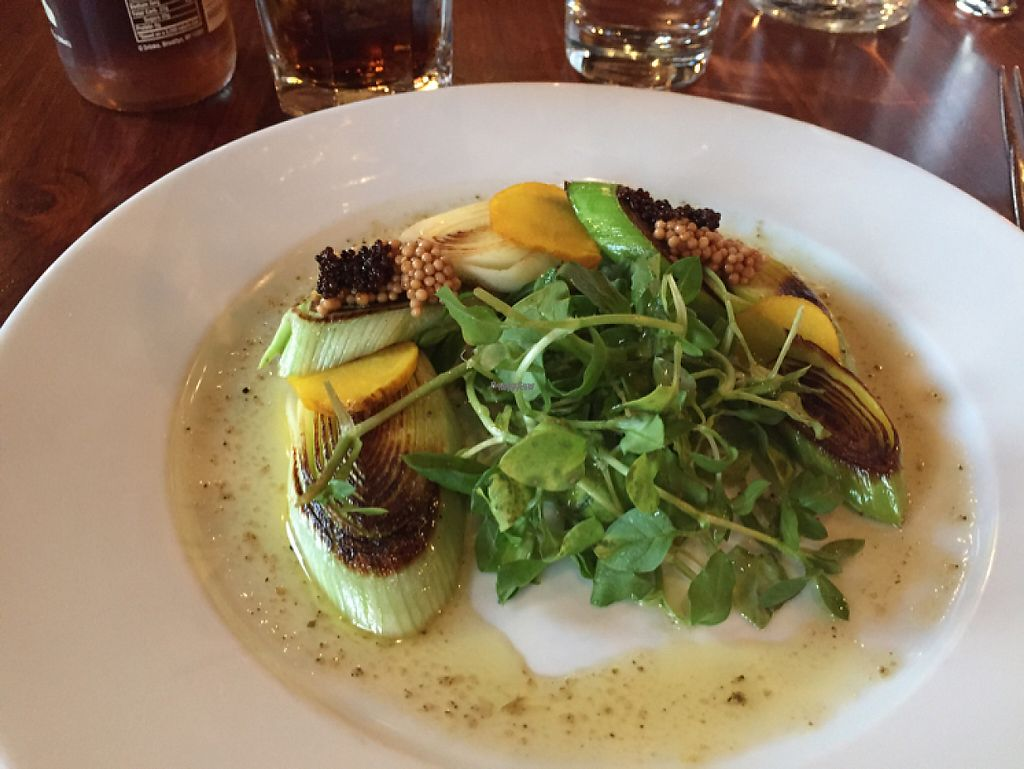 "Photo of CLOSED: Harvest at The Bindery  by <a href=""/members/profile/Browncoat3000"">Browncoat3000</a> <br/>roasted leeks with vinaigrette  <br/> March 11, 2017  - <a href='/contact/abuse/image/57042/235193'>Report</a>"
