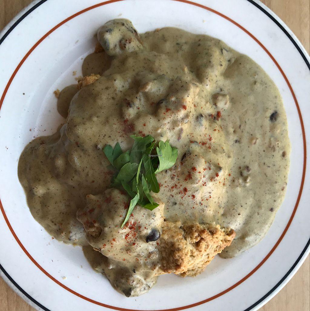 "Photo of Redwing Cafe  by <a href=""/members/profile/chocolatespy"">chocolatespy</a> <br/>vegan biscuits and gravy!  <br/> May 21, 2017  - <a href='/contact/abuse/image/57045/261123'>Report</a>"