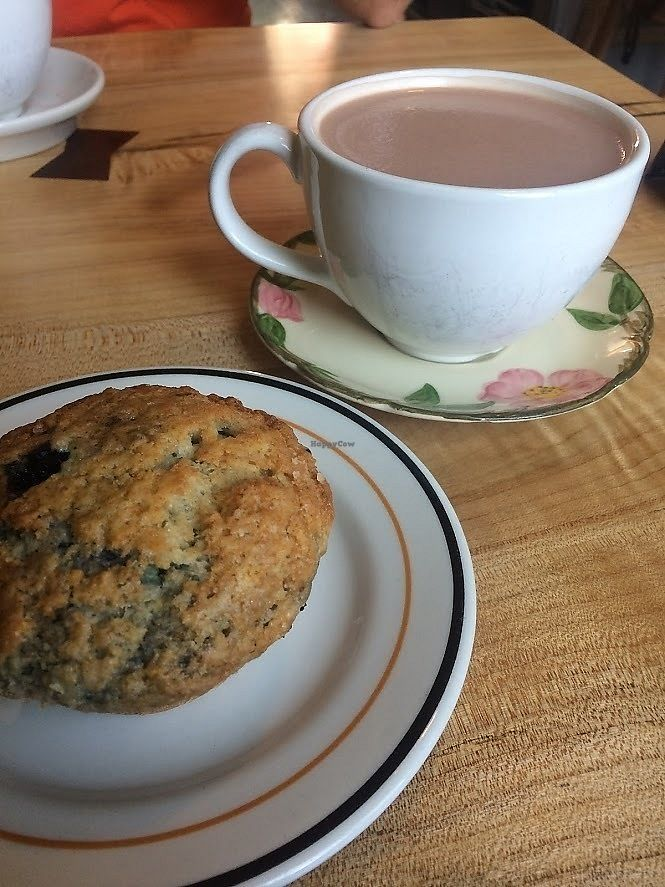 "Photo of Redwing Cafe  by <a href=""/members/profile/fullbellyhappyheart"">fullbellyhappyheart</a> <br/>Vegan blueberry muffin and hot chocolate with soy <br/> July 29, 2017  - <a href='/contact/abuse/image/57045/286429'>Report</a>"