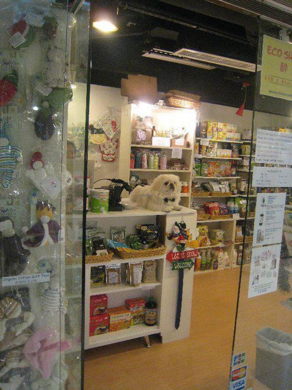 """Photo of Eco Shop  by <a href=""""/members/profile/community"""">community</a> <br/>Eco Shop <br/> April 5, 2015  - <a href='/contact/abuse/image/57165/97913'>Report</a>"""