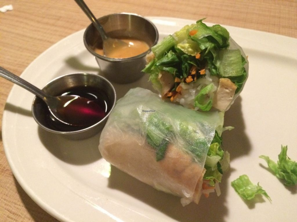"""Photo of Vegan House  by <a href=""""/members/profile/Nagemireille"""">Nagemireille</a> <br/>summer rolls wrapped in rice paper <br/> February 21, 2016  - <a href='/contact/abuse/image/57294/137259'>Report</a>"""