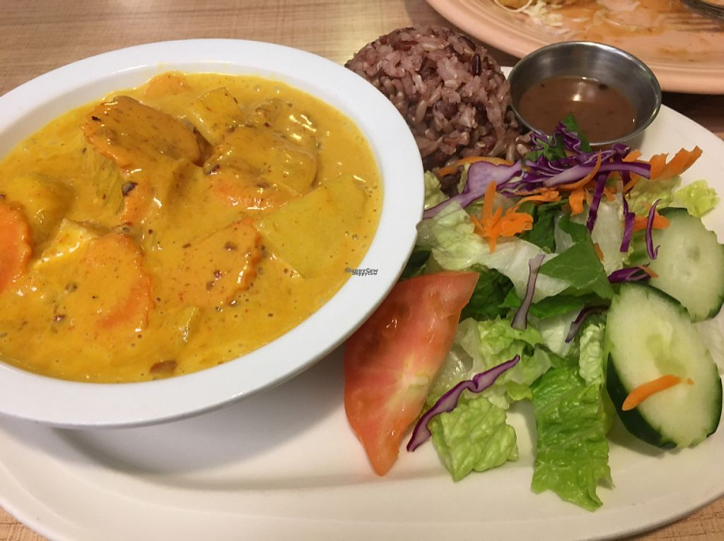 """Photo of Vegan House  by <a href=""""/members/profile/MillieJackson"""">MillieJackson</a> <br/>yellow curry <br/> February 23, 2017  - <a href='/contact/abuse/image/57294/229538'>Report</a>"""