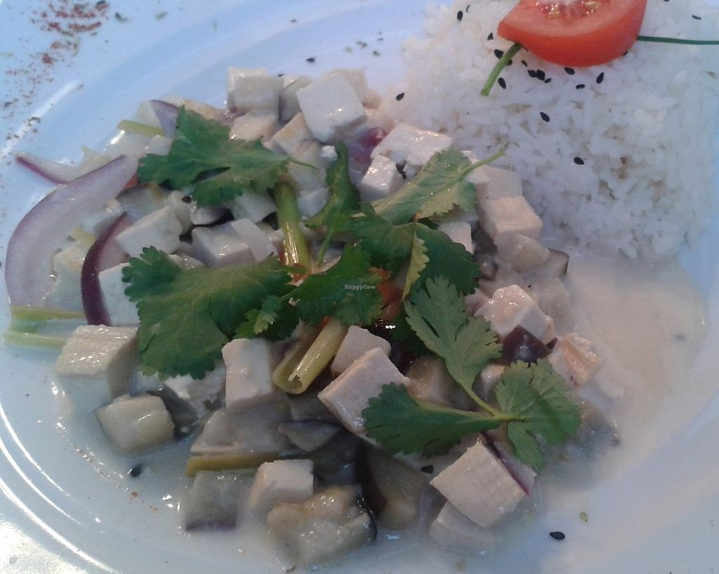 """Photo of CLOSED: Green Spirit  by <a href=""""/members/profile/Tereza-soucitne.cz"""">Tereza-soucitne.cz</a> <br/>Thai eggplant with rice <br/> January 18, 2016  - <a href='/contact/abuse/image/57301/237340'>Report</a>"""