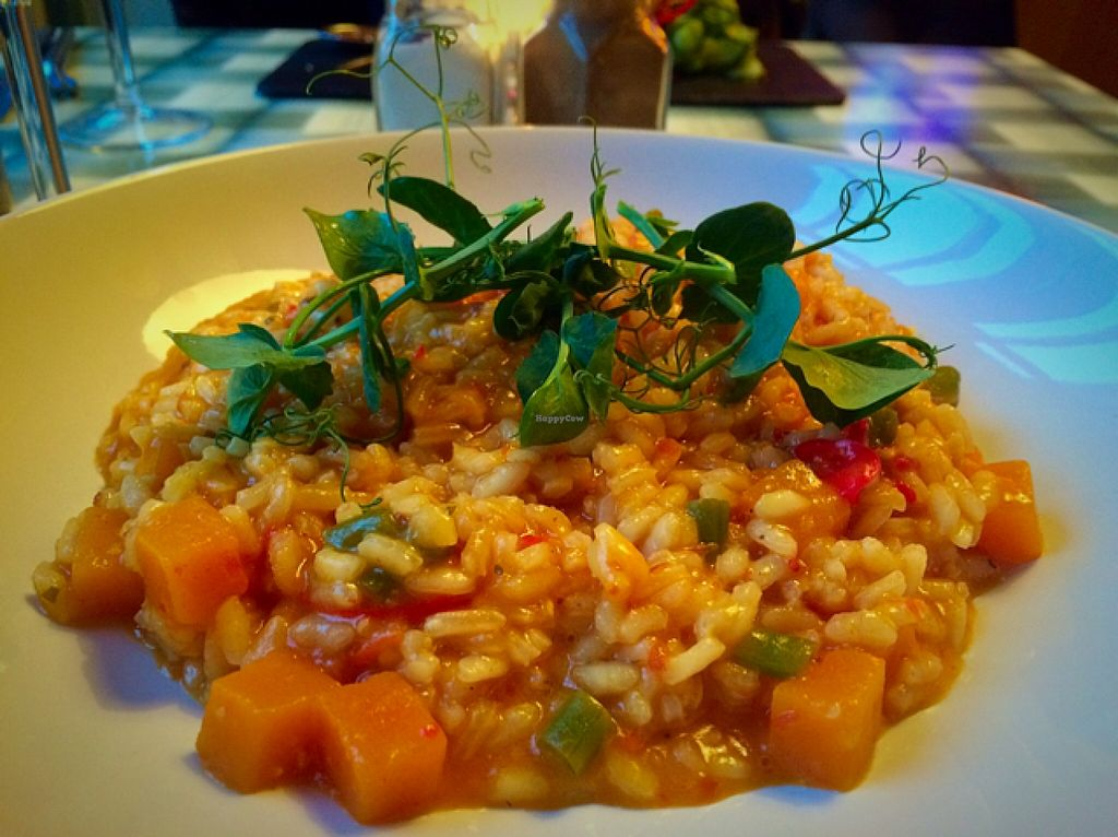 "Photo of Kitch Restaurant  by <a href=""/members/profile/CiaraSlevin"">CiaraSlevin</a> <br/>Butternut squash risotto  <br/> March 21, 2016  - <a href='/contact/abuse/image/57340/140855'>Report</a>"