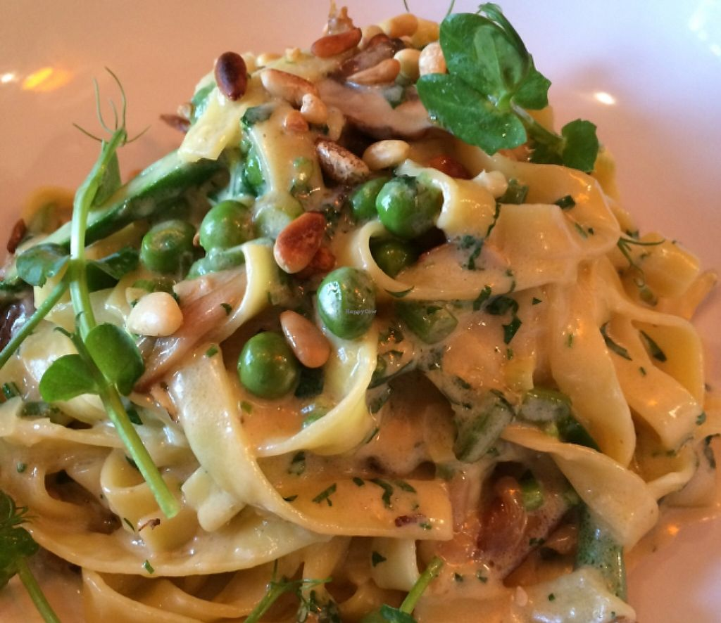 "Photo of Kitch Restaurant  by <a href=""/members/profile/CiaraSlevin"">CiaraSlevin</a> <br/>Vegetarian mushroom pasta  <br/> September 15, 2015  - <a href='/contact/abuse/image/57340/239740'>Report</a>"