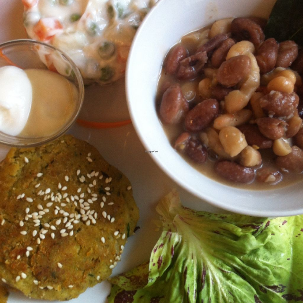 """Photo of Selezione Naturale  by <a href=""""/members/profile/hokusai77"""">hokusai77</a> <br/>sesame falafel, mixed beans, and mayo salad <br/> February 14, 2016  - <a href='/contact/abuse/image/57407/136216'>Report</a>"""