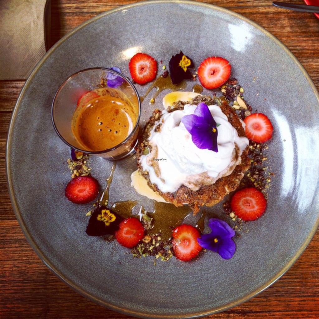 """Photo of Jed  by <a href=""""/members/profile/Bridiekate"""">Bridiekate</a> <br/>pumpkin seed pancakes vegan gluten free <br/> June 27, 2016  - <a href='/contact/abuse/image/57433/156352'>Report</a>"""