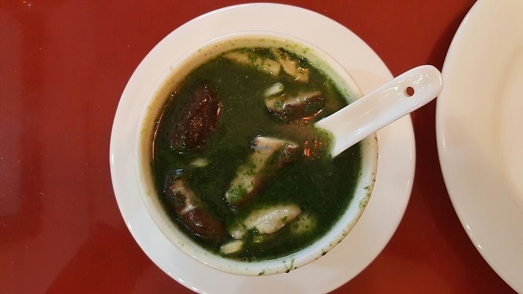 """Photo of Buddha Bodai - Mulberry St  by <a href=""""/members/profile/debbiesmall"""">debbiesmall</a> <br/>Spinich mushroom soup so fresh delicious  <br/> March 22, 2017  - <a href='/contact/abuse/image/57438/239348'>Report</a>"""