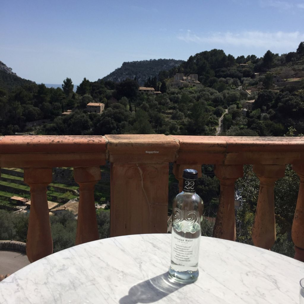 """Photo of Valldemossa  by <a href=""""/members/profile/Phonique"""">Phonique</a> <br/>the legendary 47,20€ water <br/> April 12, 2016  - <a href='/contact/abuse/image/57481/144252'>Report</a>"""