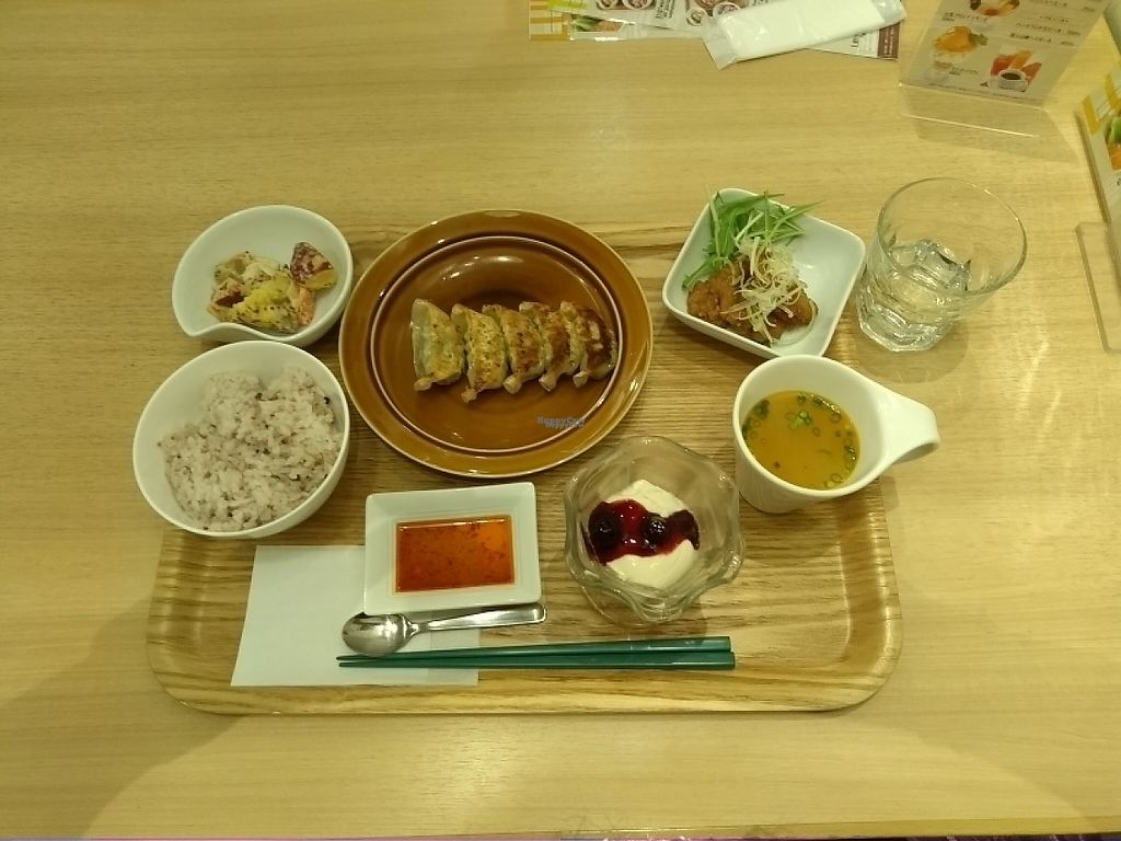 """Photo of T's Tan Tan  by <a href=""""/members/profile/graceec"""">graceec</a> <br/>vege dumplings with fried chiken  <br/> April 23, 2017  - <a href='/contact/abuse/image/57492/251363'>Report</a>"""