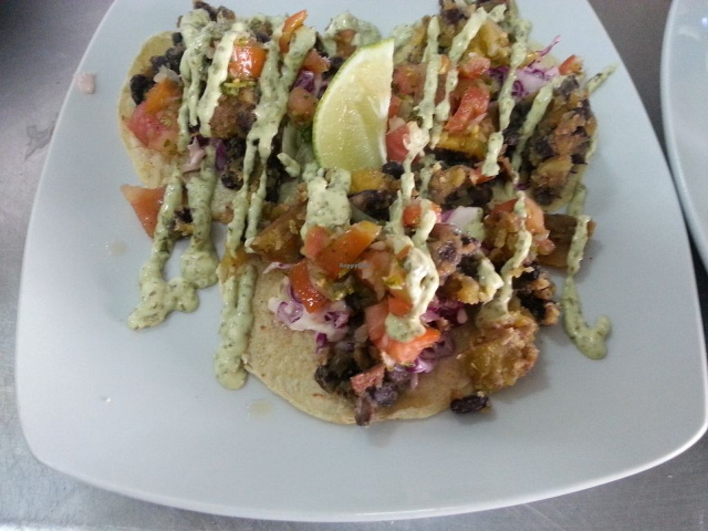 "Photo of Mesa Cafe  by <a href=""/members/profile/shelbybelize"">shelbybelize</a> <br/>sweet potato tacos <br/> January 15, 2016  - <a href='/contact/abuse/image/57505/132527'>Report</a>"