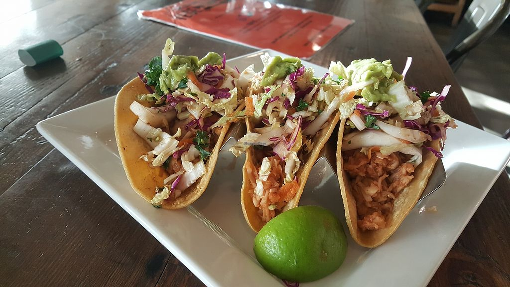 """Photo of VegeNation  by <a href=""""/members/profile/sarahssoares"""">sarahssoares</a> <br/>jackfruit tacos <br/> March 27, 2018  - <a href='/contact/abuse/image/57542/376812'>Report</a>"""