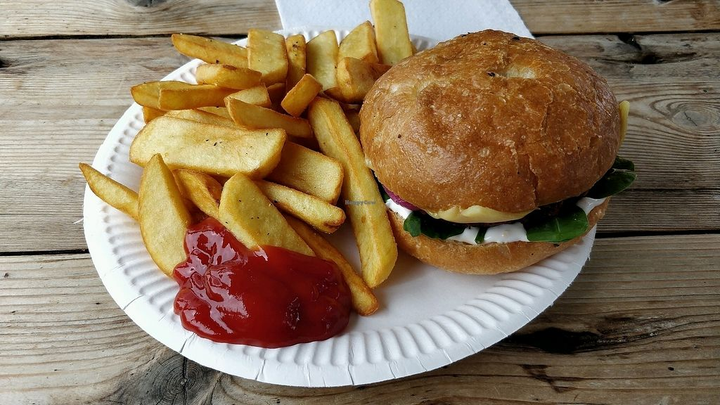 "Photo of Just FaB - Food Bus  by <a href=""/members/profile/SuperVegan77"">SuperVegan77</a> <br/>Burger - not enough ketchup to serve, burger patty disappointing <br/> March 25, 2018  - <a href='/contact/abuse/image/57709/375783'>Report</a>"