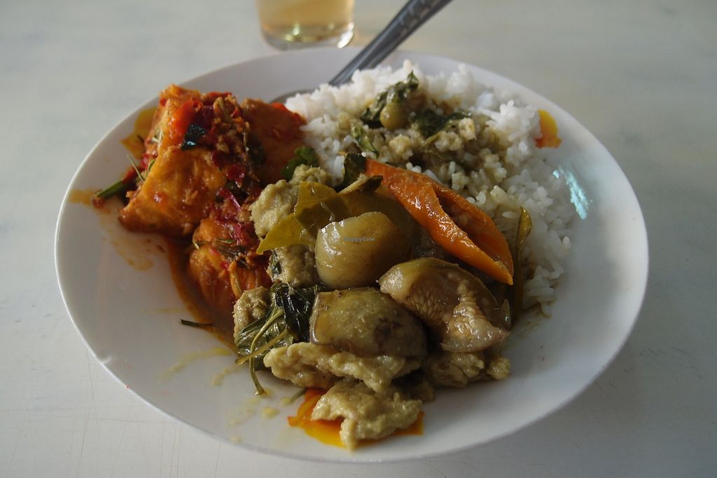 Photo of Raan Tang Lieng Soon  by Vegreg <br/>A delicious plate of rice with some very fresh fried tofu in tomato sauce and vegetarian thai green curry.  <br/> March 6, 2016  - <a href='/contact/abuse/image/57771/138968'>Report</a>