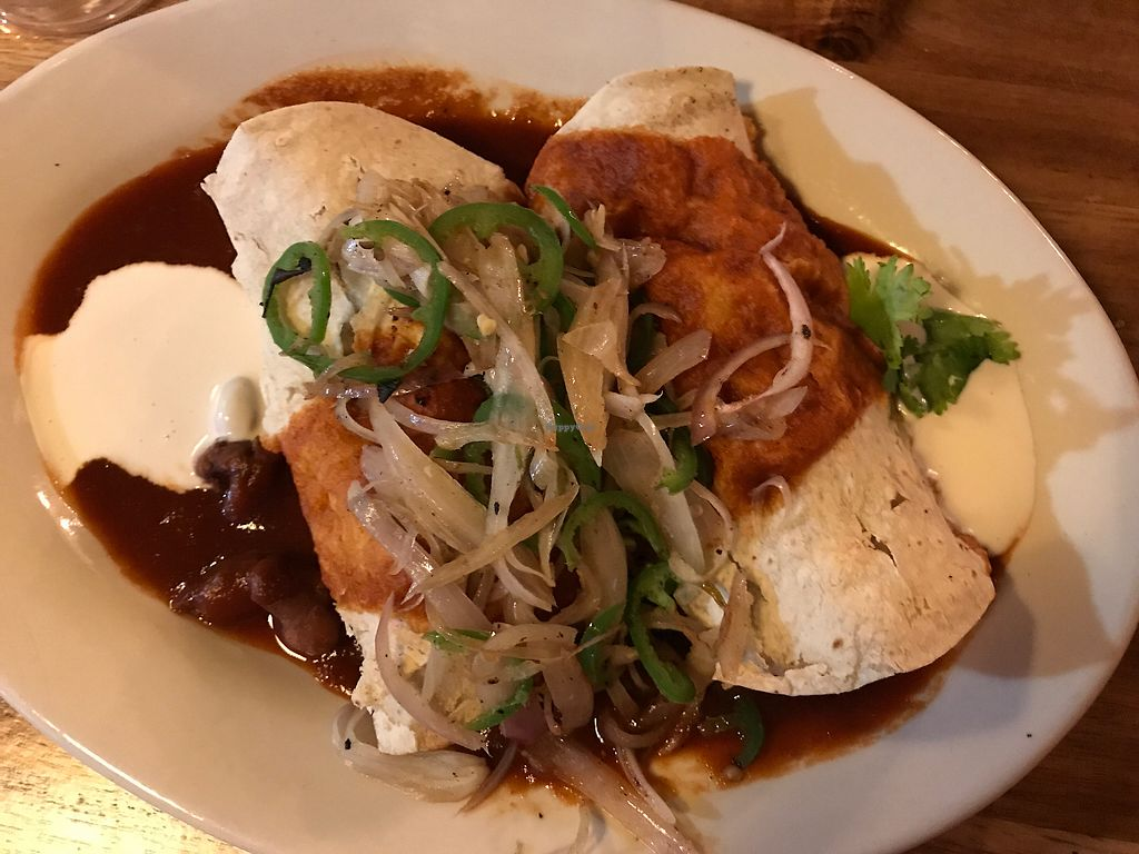 "Photo of GreenSpace Cafe  by <a href=""/members/profile/amanda.rahimian"">amanda.rahimian</a> <br/>poblano enchiladas  <br/> July 20, 2017  - <a href='/contact/abuse/image/57951/282340'>Report</a>"