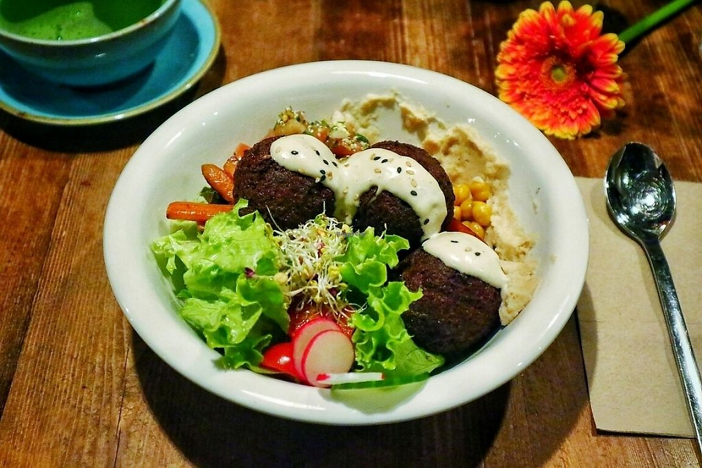 """Photo of The Bowl  by <a href=""""/members/profile/PaoloFerla"""">PaoloFerla</a> <br/>falafel bowl <br/> May 20, 2017  - <a href='/contact/abuse/image/57986/260671'>Report</a>"""