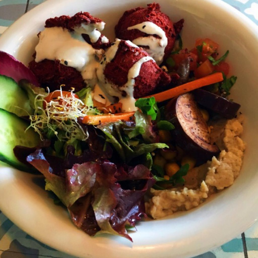 """Photo of The Bowl  by <a href=""""/members/profile/Lenchen"""">Lenchen</a> <br/>falafel Bowl  <br/> June 2, 2017  - <a href='/contact/abuse/image/57986/264960'>Report</a>"""