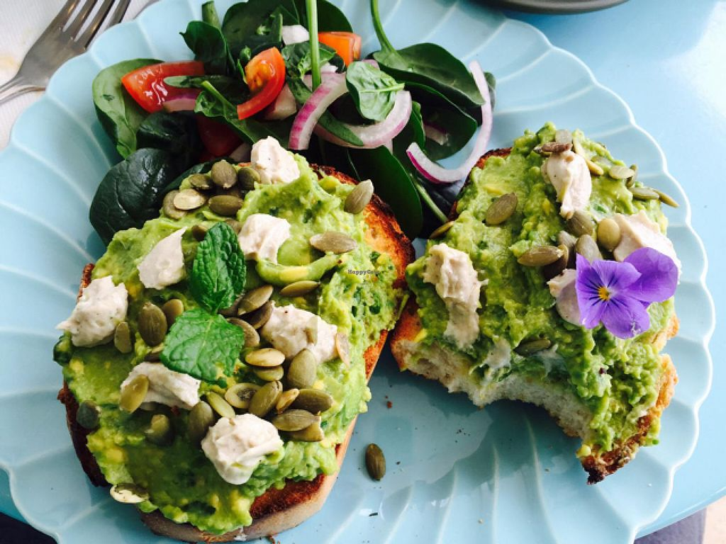 """Photo of Earthy Eating Cafe  by <a href=""""/members/profile/mutant%20bean"""">mutant bean</a> <br/>smashed avocado with cashew cheese by request  <br/> May 3, 2015  - <a href='/contact/abuse/image/58006/101121'>Report</a>"""