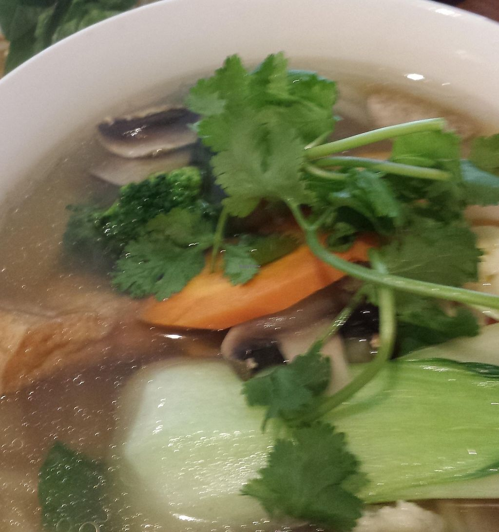 "Photo of Fina's 2  by <a href=""/members/profile/Aloo"">Aloo</a> <br/>Famous Vegan Pho <br/> November 6, 2015  - <a href='/contact/abuse/image/58007/256495'>Report</a>"