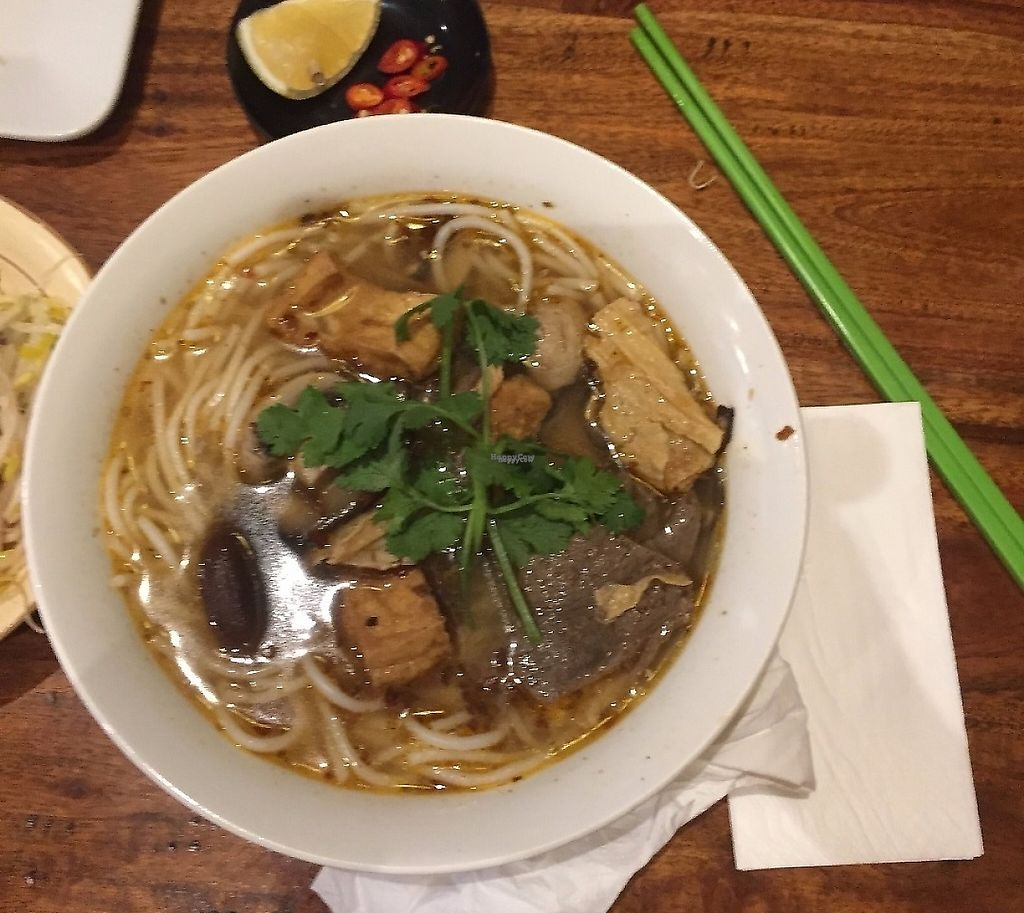 "Photo of Fina's 2  by <a href=""/members/profile/GreatVeganExp"">GreatVeganExp</a> <br/>Spicy noodle soup <br/> January 13, 2017  - <a href='/contact/abuse/image/58007/256499'>Report</a>"