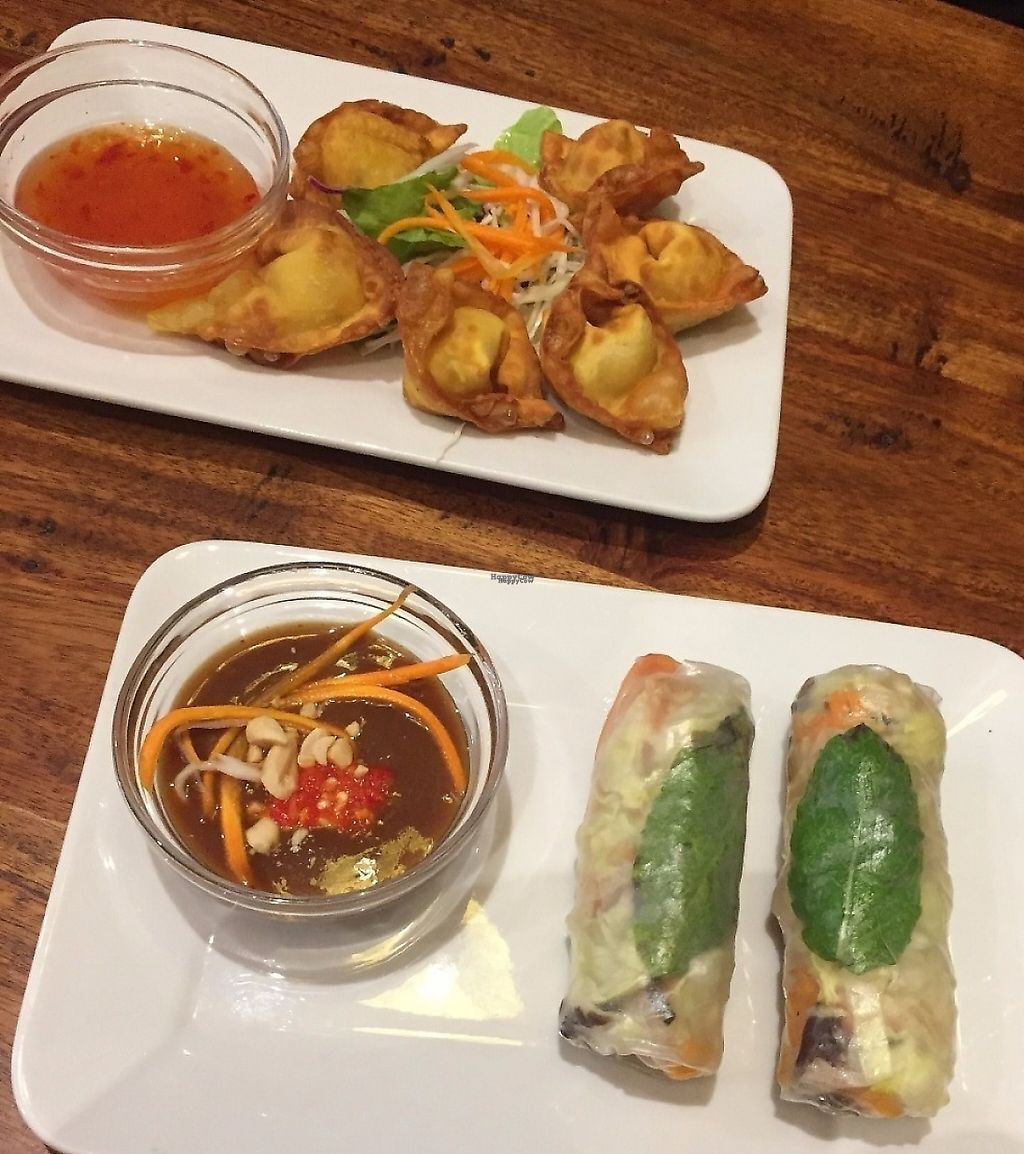 "Photo of Fina's 2  by <a href=""/members/profile/GreatVeganExp"">GreatVeganExp</a> <br/>Rice paper rolls, and wontons <br/> January 13, 2017  - <a href='/contact/abuse/image/58007/256501'>Report</a>"