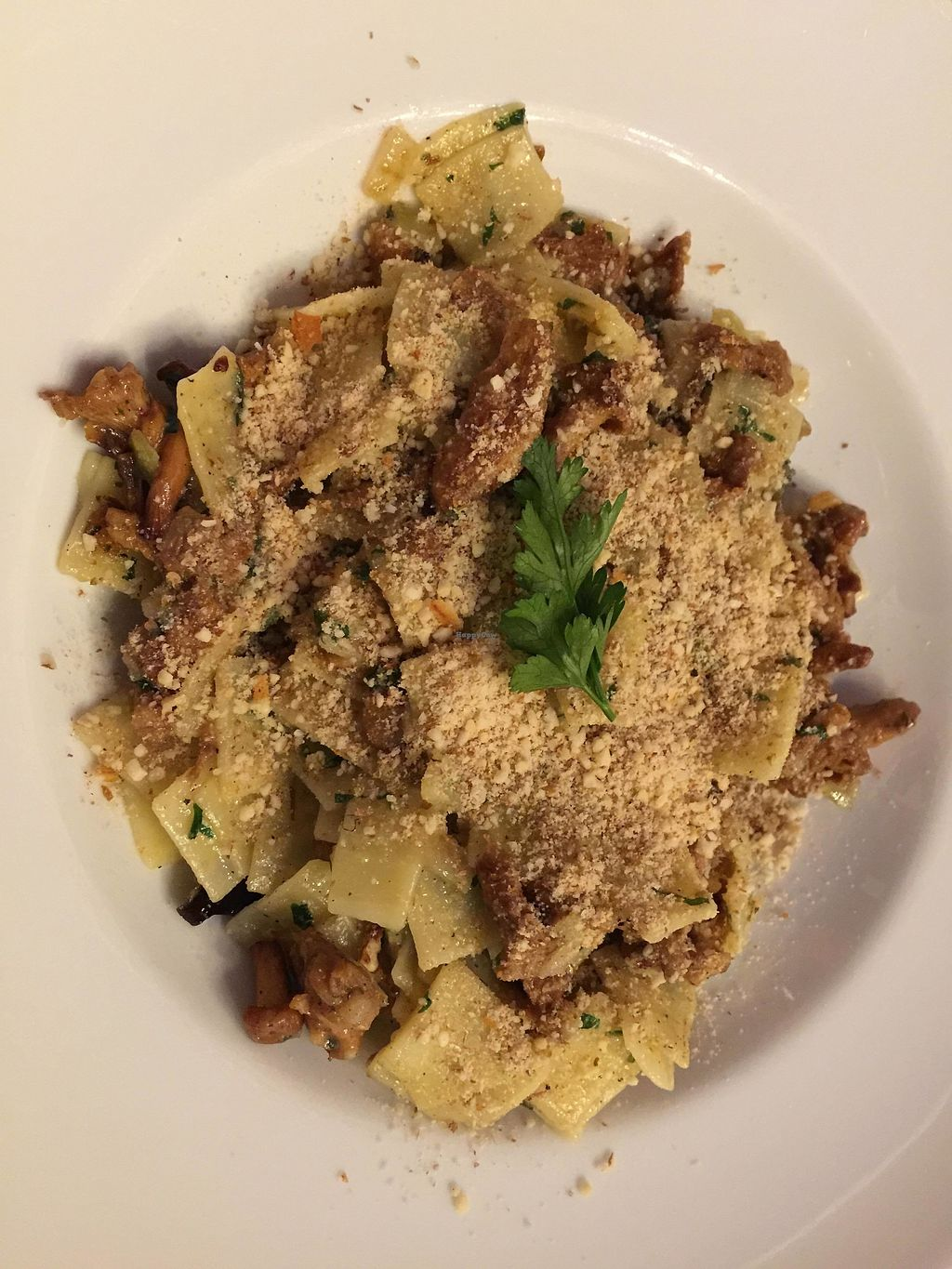 """Photo of Vege Bistro - Polish Vegan Food  by <a href=""""/members/profile/FernandoMoreira"""">FernandoMoreira</a> <br/>noodles with mushrooms <br/> February 20, 2018  - <a href='/contact/abuse/image/58057/361788'>Report</a>"""