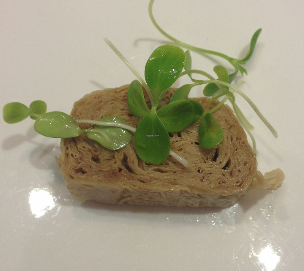 """Photo of Hua Kai - Blossom Vegetarian  by <a href=""""/members/profile/theatreweird"""">theatreweird</a> <br/>Starter - Tofu sheets <br/> August 18, 2015  - <a href='/contact/abuse/image/58112/265187'>Report</a>"""