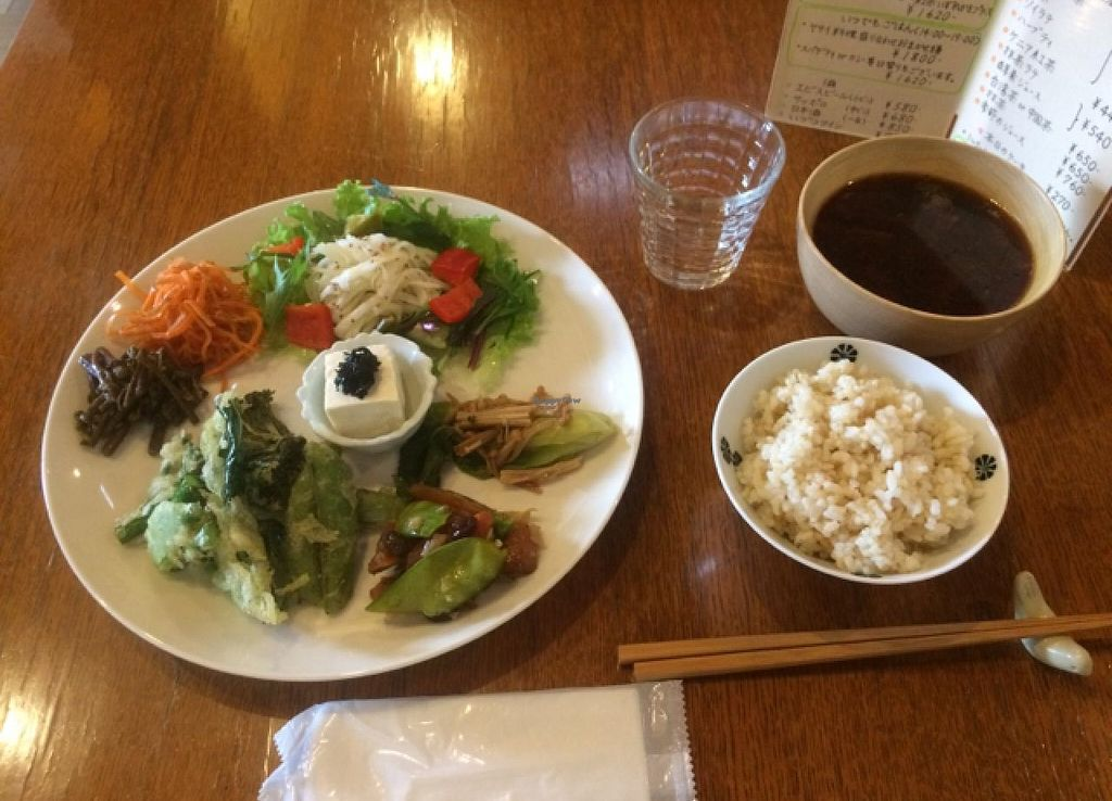 """Photo of Sora Iro Maga Tama  by <a href=""""/members/profile/proximateplatypus"""">proximateplatypus</a> <br/>vegetable vegan lunch plate <br/> May 15, 2015  - <a href='/contact/abuse/image/58211/102363'>Report</a>"""