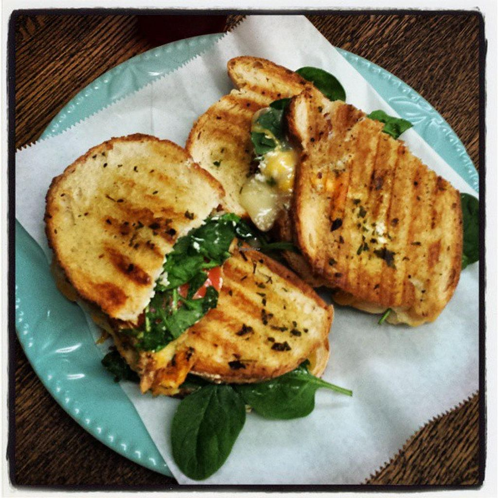 "Photo of Southern Juice and Beverage Co.  by <a href=""/members/profile/JuiceSouthern"">JuiceSouthern</a> <br/>The Old Goat - Cheddar and Goat Cheese Panini with Spinach, Arugula, and Tomato grilled with Herb butter  <br/> May 11, 2015  - <a href='/contact/abuse/image/58243/101936'>Report</a>"