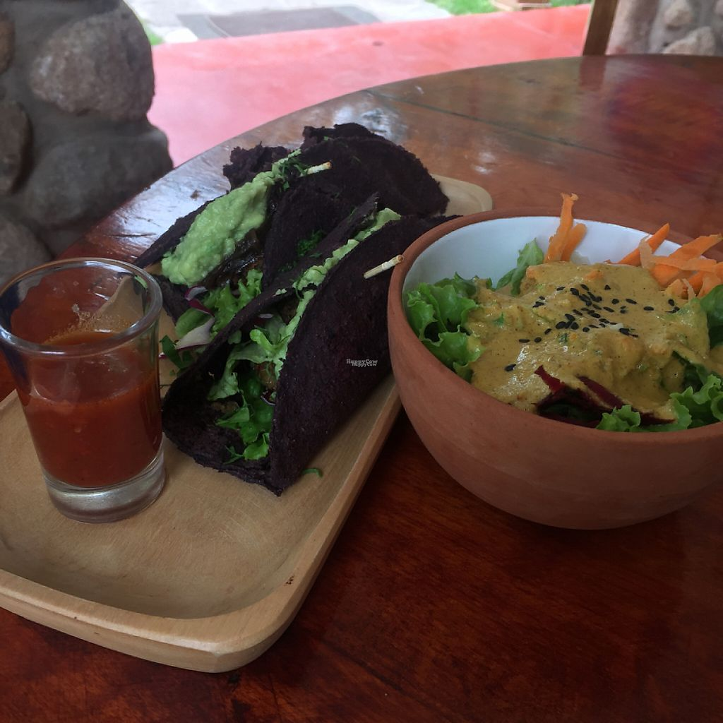 "Photo of Kaia Shenai  by <a href=""/members/profile/Lozcriston"">Lozcriston</a> <br/>vegan purple corn tacos with a salad  <br/> March 21, 2017  - <a href='/contact/abuse/image/58306/239284'>Report</a>"