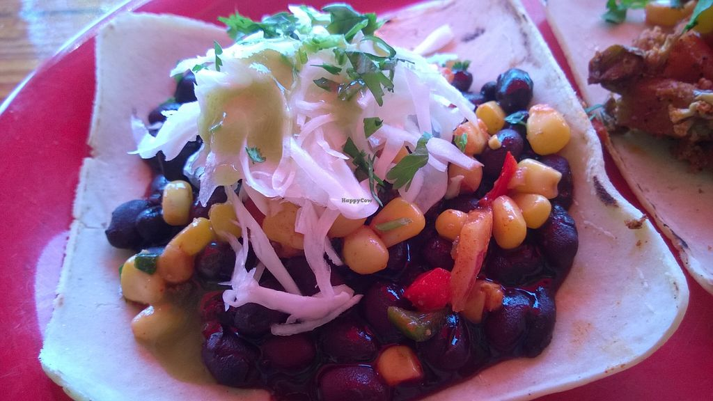 """Photo of Amigos Tortilla Bar  by <a href=""""/members/profile/meredith"""">meredith</a> <br/>Vegan Black Bean Taco <br/> April 20, 2016  - <a href='/contact/abuse/image/58396/145524'>Report</a>"""