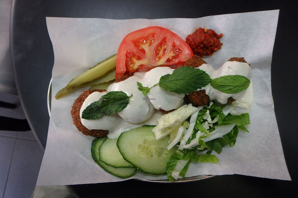 "Photo of Enjoy Just Falafel   by <a href=""/members/profile/sagar"">sagar</a> <br/>Falafel Platter <br/> August 22, 2017  - <a href='/contact/abuse/image/58480/295854'>Report</a>"